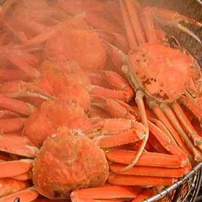 【冬得】【お部屋食】『老舗の味』旬の松葉蟹を堪能≪松葉かに鍋プラン≫