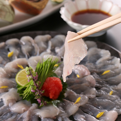 【板長イチオシ】「ふぐ・カニコース」 高級食材の饗宴、ふぐもカニも堪能!!【平日2名料金UPなし】
