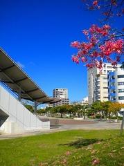 1名様シングル部屋(禁煙室)朝食付■OKINAWA那覇市新都心■空港からモノレール20分で到着