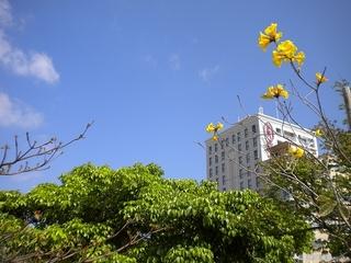 【リラックスの高層階部屋(8階以上)シングルプラン(ポイント5%付)◆禁煙室/喫煙室(朝食付)】