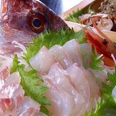 氷見牛陶板焼き付き/富山湾の旬の美味しいお刺身舟盛プラン 【3〜11月】