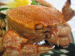 【眺望★訳あり】〜ちょっぴりお得♪〜<毛蟹&海の幸を大漁飾盛り>お食事処