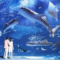 【楽パックスペシャル★家族旅行応援】美ら海水族館やマリオットを楽しもう! <朝食付>