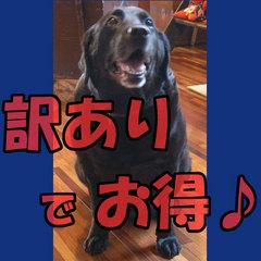 訳あり部屋でHAPPY♪500円OFF★1泊2食付【けーちゃん】プラン