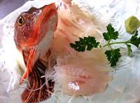 【スタンダード】新鮮地魚料理と人気の大きいエビフライが付いた1泊2食【アッパレしず旅】(ペット可)