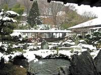【ファミリー】スキー1日券付 宿泊パック 季節の会席