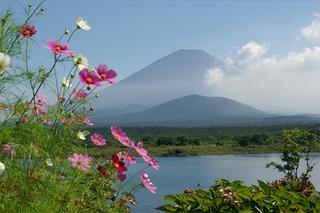 【素泊まり】富士五湖周辺と富士山でたっぷり遊ぼう