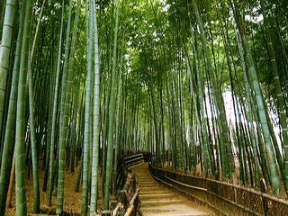 ゆったり京都・7泊以上連泊割引