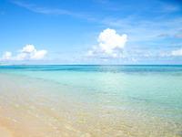 【限定特価】3月の宿泊ならこのプラン!沖縄北部の春大満喫(素泊まり)