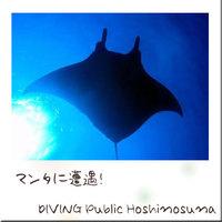 ☆ダイビングパック☆専用クルーザーで西表の神秘的な海へ!<夕朝食付>