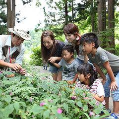 【自然体験付き】「朝の森の散歩」を楽しもう!