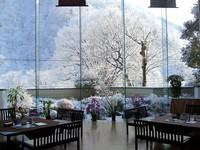 【期間限定】栃木の旬を感じる「いちご」フェア【ホンモノを本気で楽しむ旅】