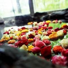 ◆今日は特別な日(^^♪晩餐館記念日プラン-≪ケーキ・1ドリンクサービス付≫ ☆バラ風呂は貸切で♪