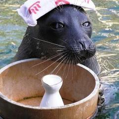 【ファミリー】箱根園水族館・入館券付!朝夕お部屋食プラン♪
