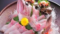【刺身好き必見!】黒鮑付のお造り盛り合わせ(新鮮地魚の姿造り) ボリューム満点大満足プラン