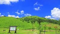 ■素泊まり■三段峡の入り口目の前!★秘境散策・観光の拠点に最適♪