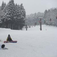 【平日限定スキー連泊割】たくさん滑りたいスキーヤー&ボーダーさんは要チェック(リフト券付)