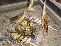 ◆* 一日一組の農家民宿 ≪別館≫江戸*◆ 【基本プラン/能登海鮮料理】