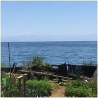 ◆* 一日一組貸切の農家民宿 海の家*◆ 【朝食付プラン】