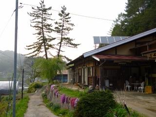 季節の山菜料理や自然の草花の摘み草料理ブラン