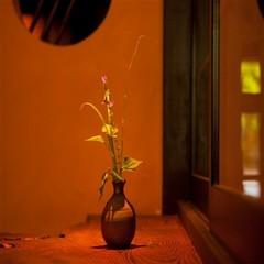 ◆昔懐かしさと心地よさに身を委ねる◆純和風離れ「国東」1泊2食付スタンダードプラン【禁煙】