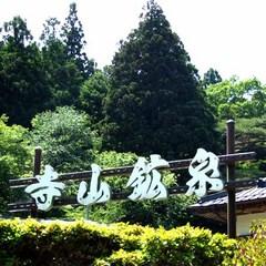 ◆素泊まり◆まずは赤褐色の天然温泉を堪能、プチ湯治プラン!JR矢坂駅より車で15分