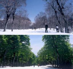 春スキーのご予定はお早めに■リフト1日券付き■温泉&お食事満喫プラン【2食付】