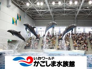 【源泉貸切風呂5湯無料!】かごしま水族館と豪華グルメ満喫プラン