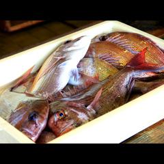 【海鮮ギュギュッと詰め込みました!】カワハギ、鯛、…贅沢素材がたっぷり入った鍋コース♪ 1泊2食付
