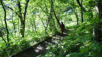 2時間ウオーキングと森林浴で心と体のリフレッシュ♪素泊まりプラン