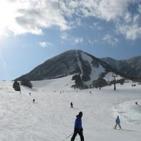【スキー・スノボー】ゲレンデ0分★スキー・スノボーの拠点に最適!スタンダード2食付き【お先でスノ。】