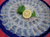 ★若狭で食べる高級魚!クエフルコース★