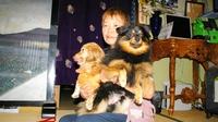 ペット同宿OK★小型犬・中型犬★大歓迎です♪