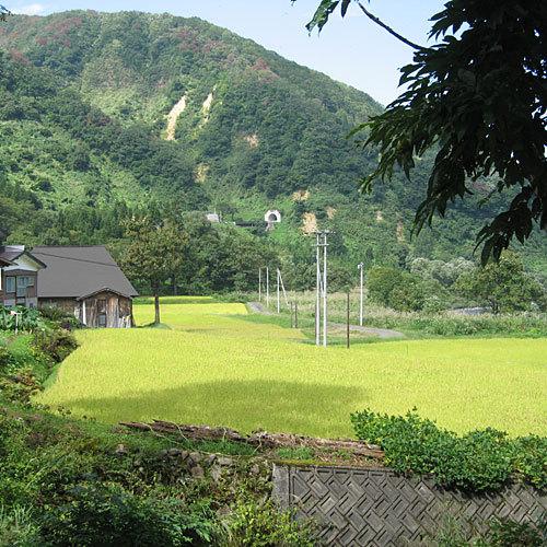 清津峡温泉 いろりとほたるの宿せとぐち 関連画像 1枚目 楽天トラベル提供