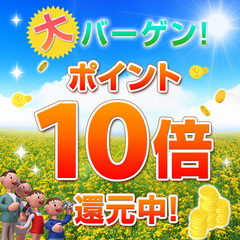 ☆☆ポイント10倍☆☆宿泊代の10%ポイントを還元♪(朝食付)