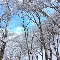 【滋賀の山へ登ろう!】登山に必要な「水分」「行動食」のついた登山者おすすめプラン♪(朝食付)