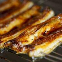 【鰻づくし】鰻の蒲焼き×白焼き×鰻の釜飯和食会席【アッパレしず旅】