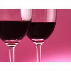 ★ガーネット色のワインと頂く贅沢なひと時★【現金特価】