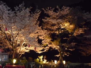 梅乃香膳と春の京都[北野天満宮」の梅園。二条城の早春・二条城イルミナ−ゼと静寂の高雄で癒しの一夜を