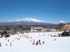 【素泊り】スキーガーデンパラダリフト1日券&スキー後に使える<健康ランド入館無料券>付
