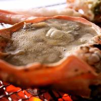 ◆活蟹会席・竹コース◆『憧れの活蟹を1人1杯』直前まで活きていた活蟹を味わい尽くす【レストラン食】