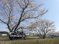 【バイクツーリング歓迎】屋根付駐車場確約ご宿泊プラン【ライダー歓迎】