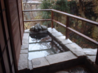 春の貸切温泉 福島名物 川俣町の軍鶏(しゃも)料理プラン シングル 混浴 源泉