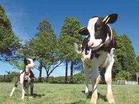 カップルに、ファミリーに最適♪【動物と触れ合える】 朝食・成田ゆめ牧場付きプラン!