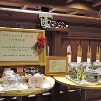 【シンプルステイ】自然と天然温泉で心身リフレッシュ!お食事なしの素泊まりプラン