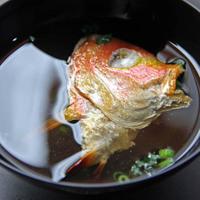 【スタンダード会席】鮮度抜群!!若狭湾で獲れたてピチピチ旬魚を味わう♪【現金特価】
