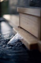 【50歳以上】新鮮地魚と美肌の湯で本物の寛ぎを!