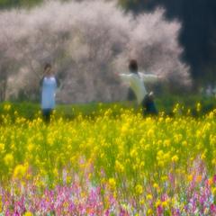 【春限定】砂むし券&洋菓子付き♪ぽっかぽか陽気に誘われて☆☆☆☆ふたりの春物語