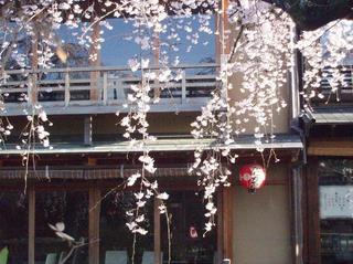 【1泊朝食付プラン】京都の数奇屋造りの家の宿。京都駅からバスで約12分 バス停から徒歩3分