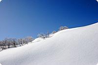 【冬得】アルツ磐梯スキー場リフト★1日券付プラン!